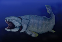 a dunkleosteus rendering (source: wikipedia)