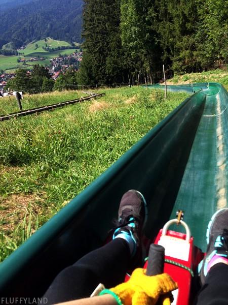 schliersee rodelbahn: an alpine roller coaster